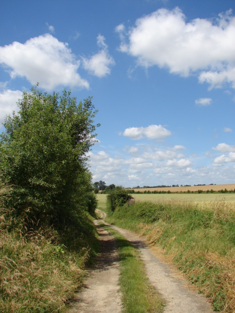 Fig. 2. Le chemin du Catelet en 2008 (Photo G. Delauney).